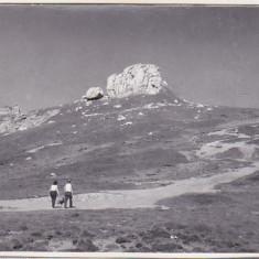 bnk foto - Muntii Bucegi - 1964 - lot 5 fotografii
