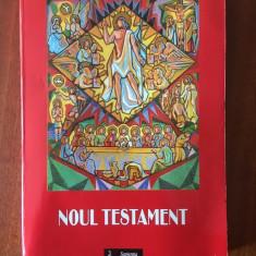 Noul Testament - Trad. Bulai / Budau - Institutul Teologic Romano-Catolic, 2002