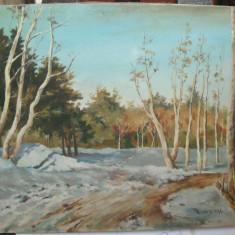 Mircea Beksi Peisaj de toamna tarzie tablou pictura ulei 38x48cm, Peisaje, Realism