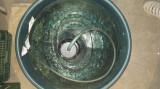 50 litri tuica din prune si mere bio