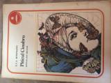 PITICUL CINABRU - E.T.A.HOFFMANN    - Ilustratii ; Val Munteanu