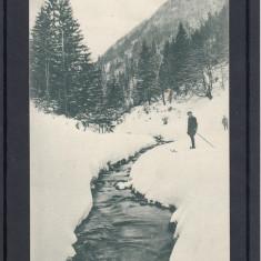 ZARNESTI   VALEA  RAULUI  FOTOGRAF  V. GREGORSCH  ZARNESTI, Necirculata, Printata