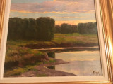 PICTURA  ULEI/CARTON 50 x 48 CM.PEISAJ PADURE SI LAC SEMNAT  STANGA JOS  A. POPP, Peisaje, Realism