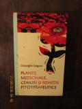 Gheorghe Grigore - Plante medicinale, ceaiuri si remedii fitoterapeutice