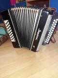 Vand acordeon garmoshka