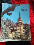 Carte Peles - Rk