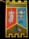 MCFA - FANION - TEMATICA GEOGRAFIE - JUDETUL HUNEDOARA