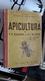 Apicultura - Scerbina