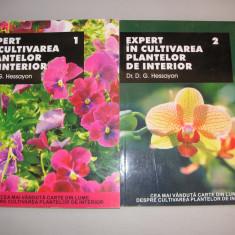 EXPERT IN CULTIVAREA PLANTELOR DE INTERIOR - D. G. HESSAYON - 2 VOLUME