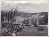 Bnk foto -Valea Doftanei cu podul de cale ferata Telega - 1964, Alb-Negru, Natura, Romania de la 1950
