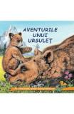 Aventurile unui ursulet - Sa cunoastem lumea inconjuratoare!