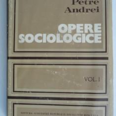 Opere sociologice - Petre Andrei vol.1