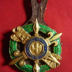 Insigna Militara Drago Paris -Armee de Terre -Service Historique ,metal si email