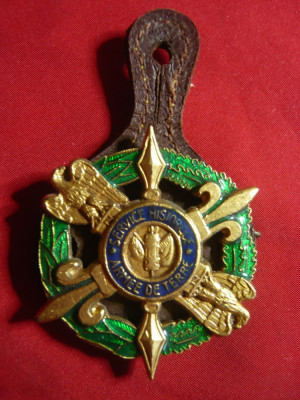 Insigna Militara Drago Paris -Armee de Terre -Service Historique ,metal si email foto