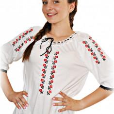 IE Dama Broderie zona Sibiului