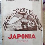 Ioan Rosca - Japonia