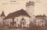 CAREI , SATU - MARE,CASTELUL CONTELE CAROLYI., Necirculata, Fotografie, Satu Mare