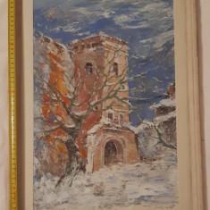 Tablou original Ctin Radinschi, Abstract, Ulei