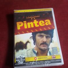 DVD PINTEA