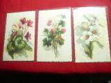 Set 3 Ilustrate - Flori inc.sec.XX Italia litografii dupa Stampe  Acuarele
