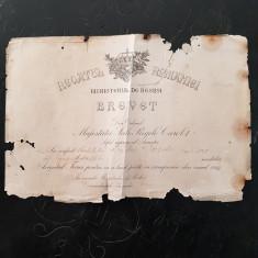 BREVET PENTRU MEDALIA AVANTUL TARII-PERIOADA CAROL I 1913