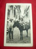Ilustrata- Taran cu magar transporta produse la Sevilla -inc.sec.XX Spania, Necirculata, Printata