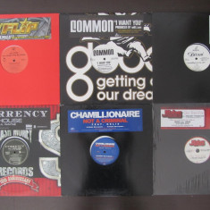 "7 Discuri Vinil-Vinyl DJ-Club Hip-Hop Lot-Colectie 12""Single-Promotional"