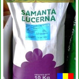 Samanta Lucerna Kg