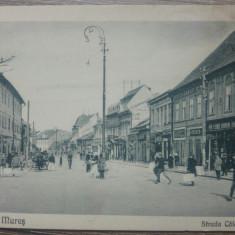 Targu Mures, Strada Calarasilor// CP, Circulata, Fotografie