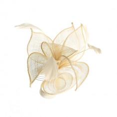 Pieptene elegant, floare alba cu pene