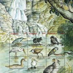 R.CENTRAFRICANA-PASARI-9V.IN COALA MICA-**  R.C.Af.166, Fauna, Africa