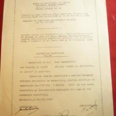 Certificat Provizoriu Banca de Agricultura si Export - la purtator 1947