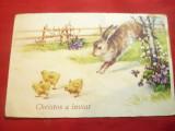 Felicitare de Paste Romania 1940 - Iepurasi si Pui, Circulata, Printata