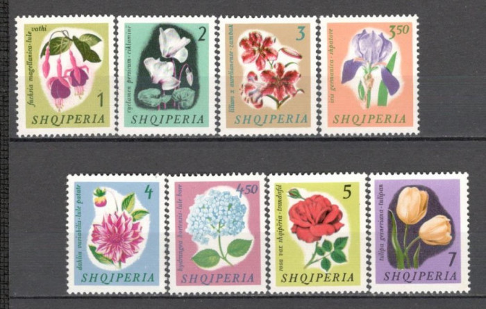 Albania.1965 Flori  PD.42