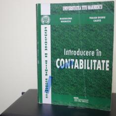 Introducere in Contabilitate Magdalena Negrutiu