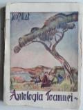ANTOLOGIA TOAMNEI - ION PILLAT