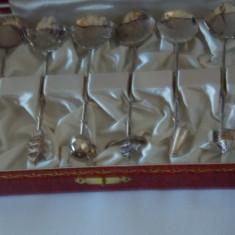 Set Lingurite argint Foarte Interesante, Set tacamuri