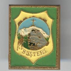 Insigna TURISM - ALPINISM - FAUNA & VANATOARE - BUSTENI