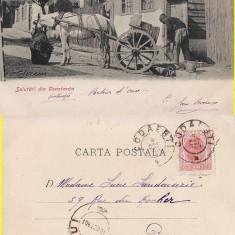 Dobrogea, Constanta -Sacagiu - tipuri-clasica, rara - Carte Postala Dobrogea pana la 1904, Circulata, Printata