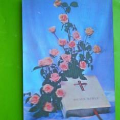 HOPCT 33936 TRANDAFIRI ROZ SI BIBLIA -ELVETIA -CP STEREO 3 D -CIRCULATA, Necirculata, Printata