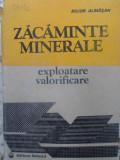Zacaminte Minerale. Exploatare, Valorificare - Bujor Almasan ,409621