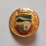 Insigna stema orasului Pucioasa - blazon