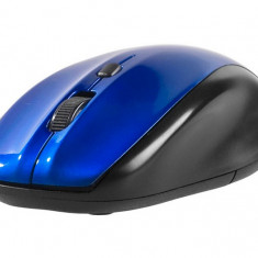 Mouse wireless Tracer StoneX Blue RF Nano