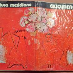 Ciucurencu. Album de pictura - Mircea Deac - Album Pictura