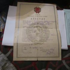Atestat rar in rusa an 1941 original cp23 - Diploma/Certificat