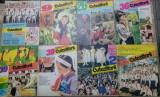 Lot 24 reviste Cutezatorii