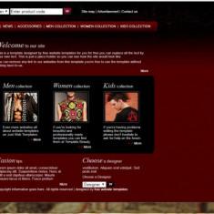 Atestat html Informatica - Tema : la alegere