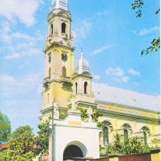 Vedere color, 105 x 148 mm, circulata, Catedrala romano-catolica, Oradea, 2003