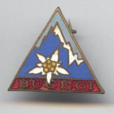 Insigna Superba - Turism Alpinism - Floare de Colt - BUCEGI