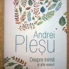 Andrei Plesu - Despre inima si alte eseuri - Filosofie